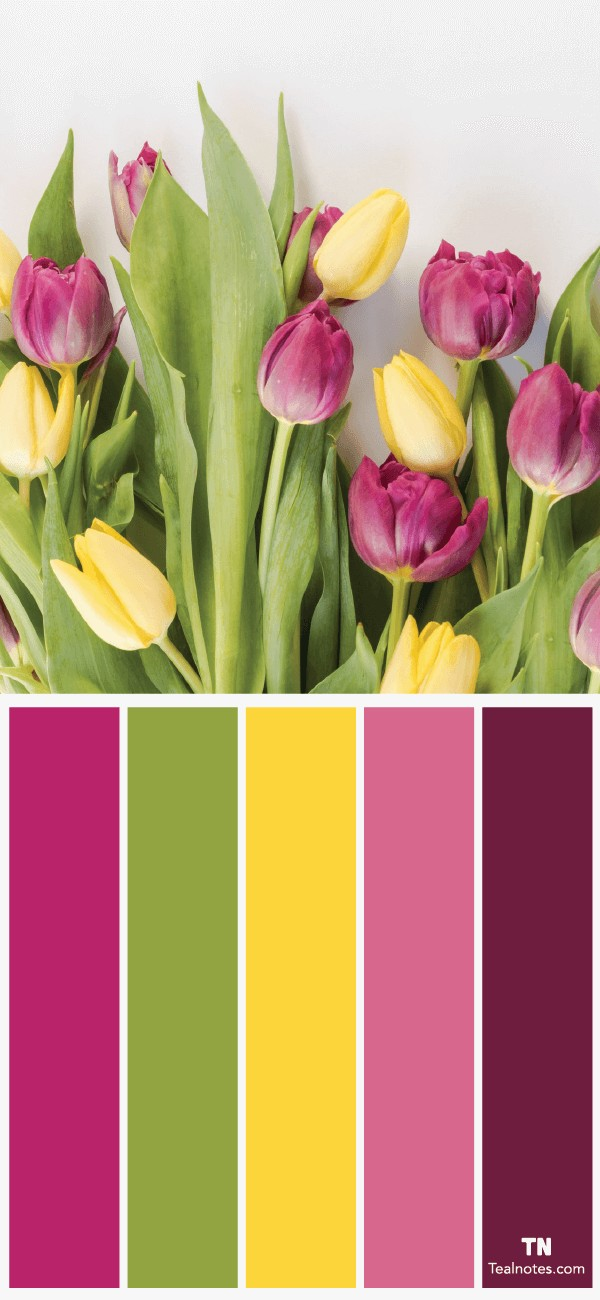 flower color combinations to use in your next design project
