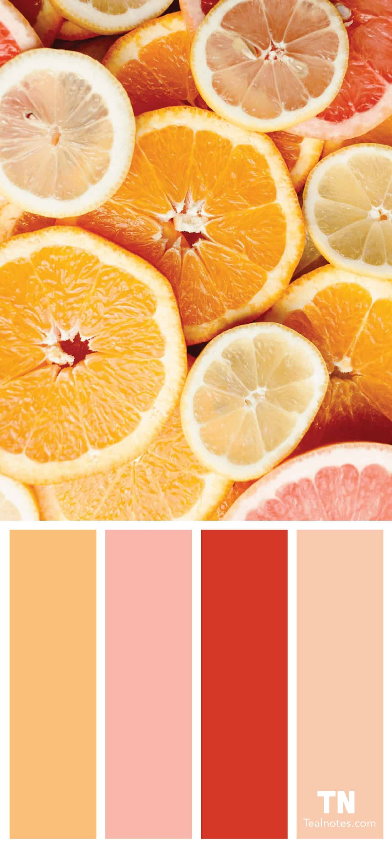 grapefruit color palette