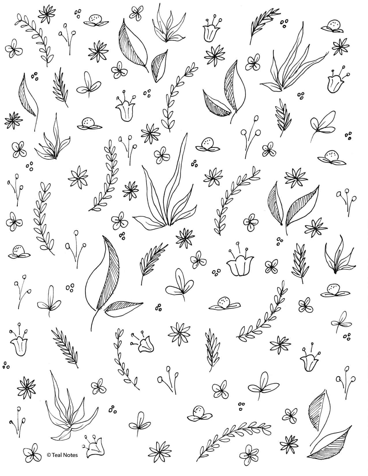 free coloring pages for adults and kids to color