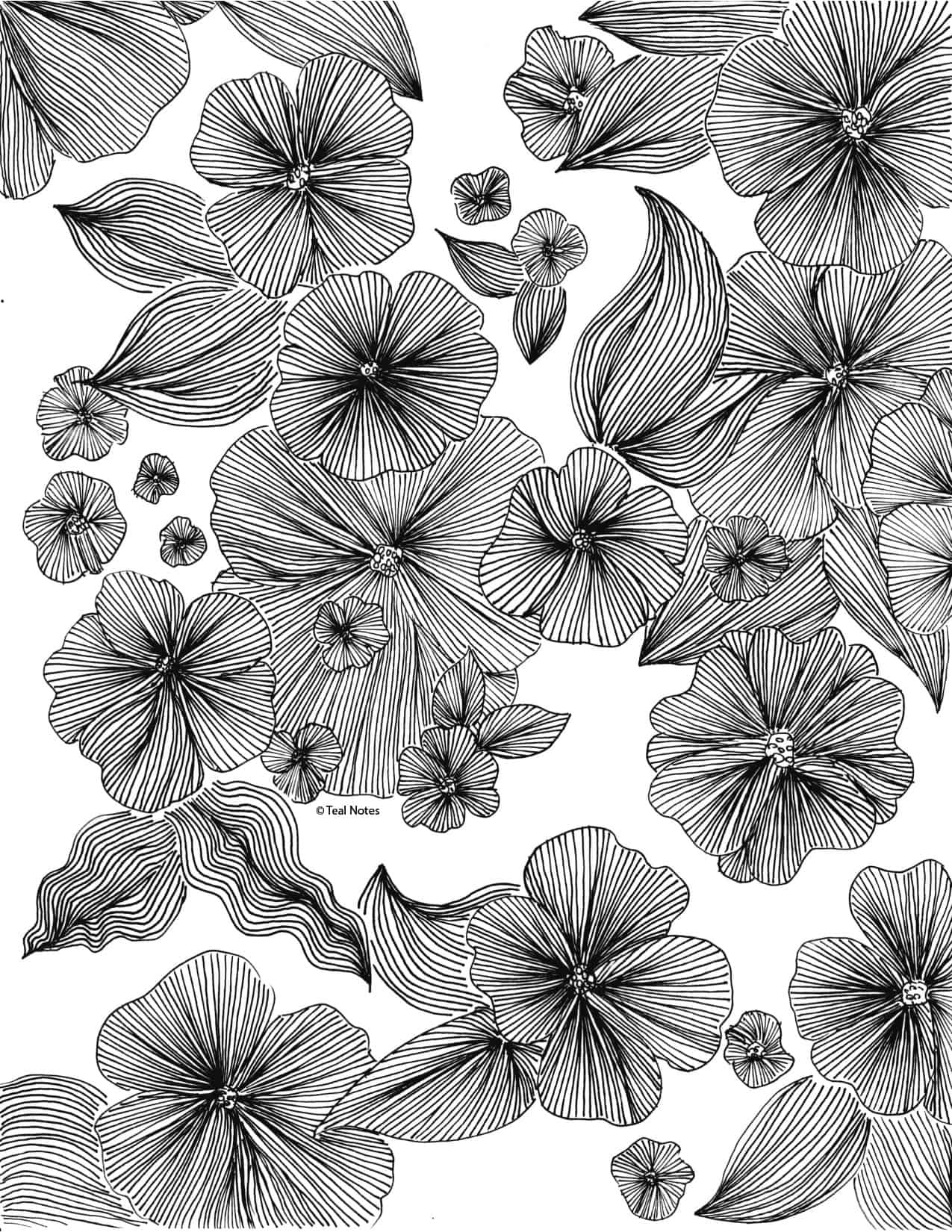 coloring pages for adults and kids to print and color