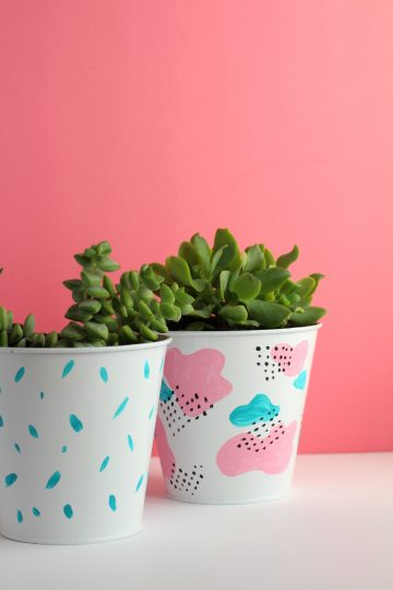 easy dollar store succulent diy