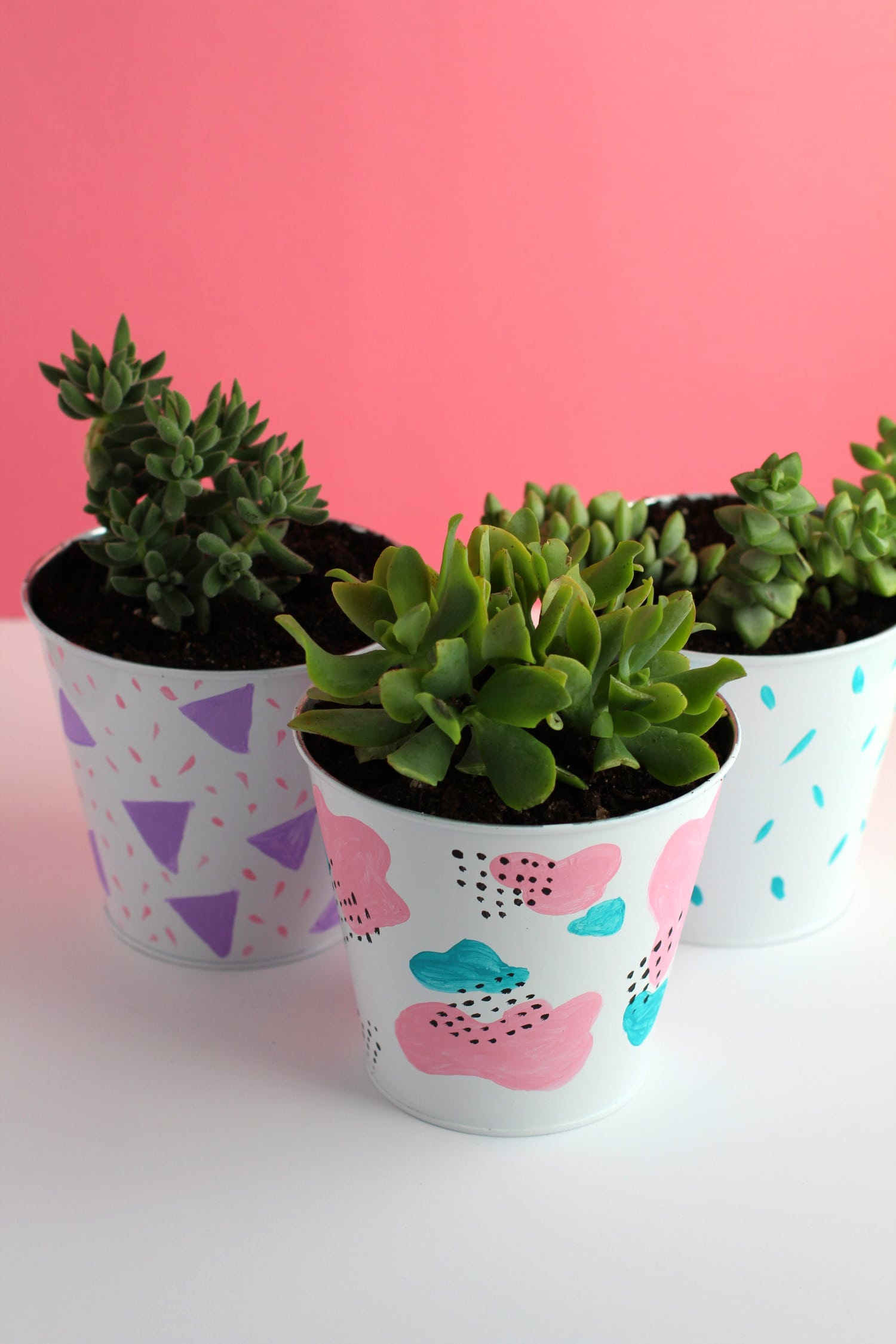 DIY Succulent Planters | fun succulent planter ideas