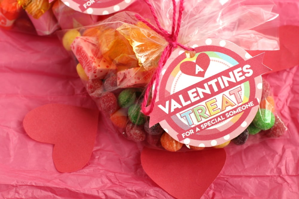 Valentine's goodie bags with free printable tags