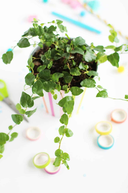 diy washi tape planter