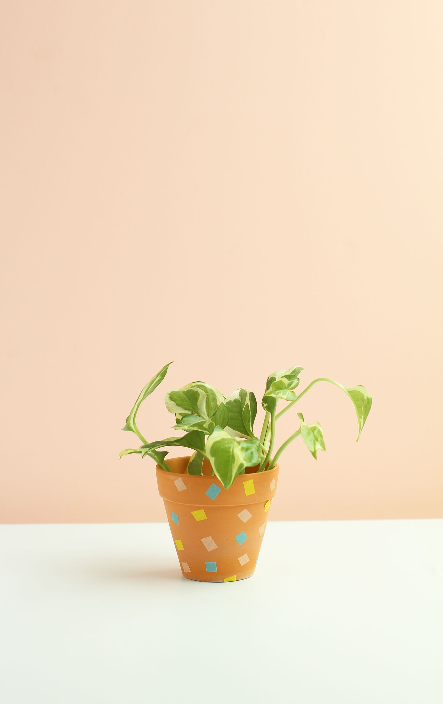 diy washi tape terra cotta planters
